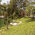 http://elromeral.com.mx/assets/img/fotos/jardin/1024/3.jpg
