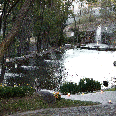 http://elromeral.com.mx/assets/img/fotos/jardin/1024/4.jpg